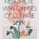 Menopause: what changes occur in the body?