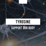 How does Tyrosine support our body