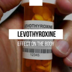 Levothyroxine and its effect on the body