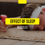 The effect of sleep on muscles