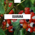 Guarana for weight loss